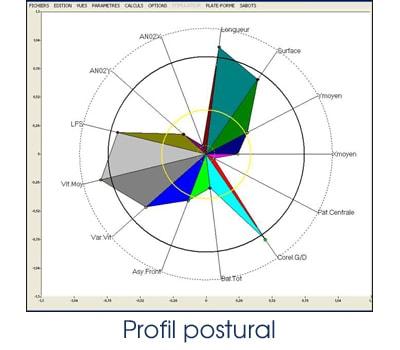 Profil postural
